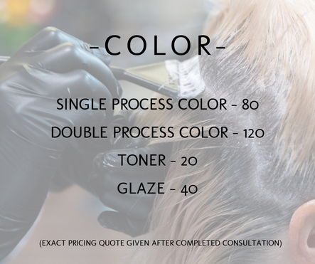 color service prices hair salon